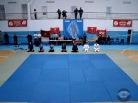 Показательные выступления на соревнованиях по АРБ 27.12.2009
