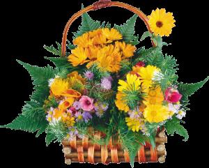 Уважаемый Валерий Анатольевич! Поздравляем Вас с Днем Рождения, желаем крепкого здоровья, большого терпения в постижении новых вершин и успеха во всех начинаниях.